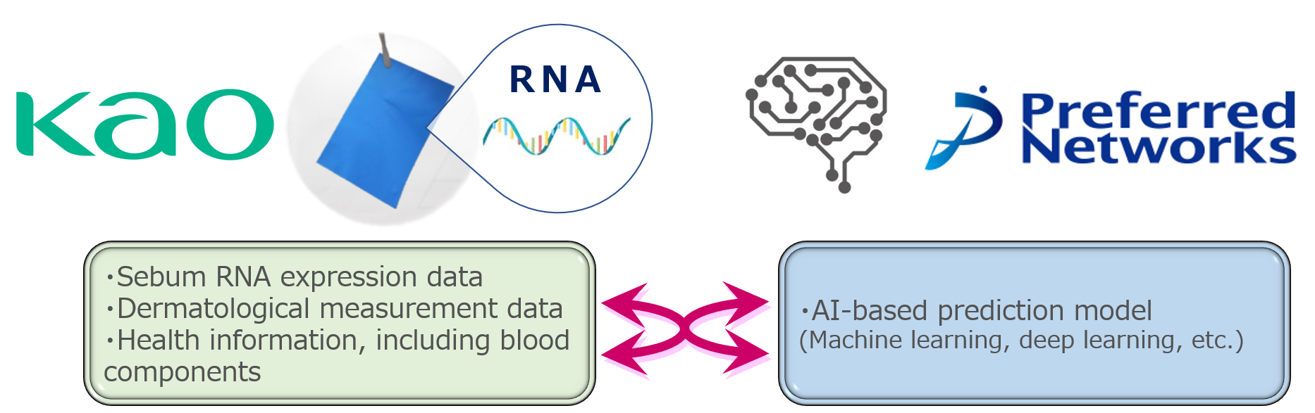 Kao and Preferred Networks Launch a Collaborative Project for Practical Applications of Sebum RNA Monitoring Technology