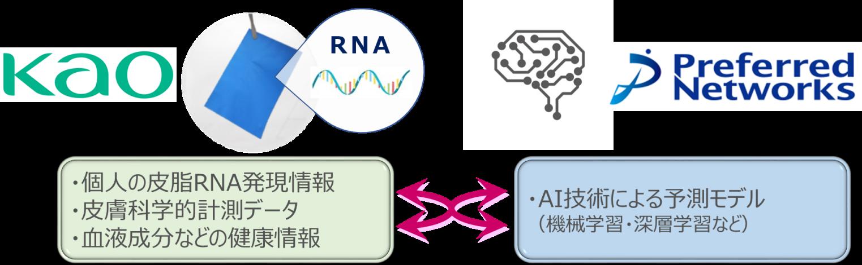 花王とPreferred Networks、皮脂RNAモニタリング技術の実用化に向けて協働プロジェクト開始